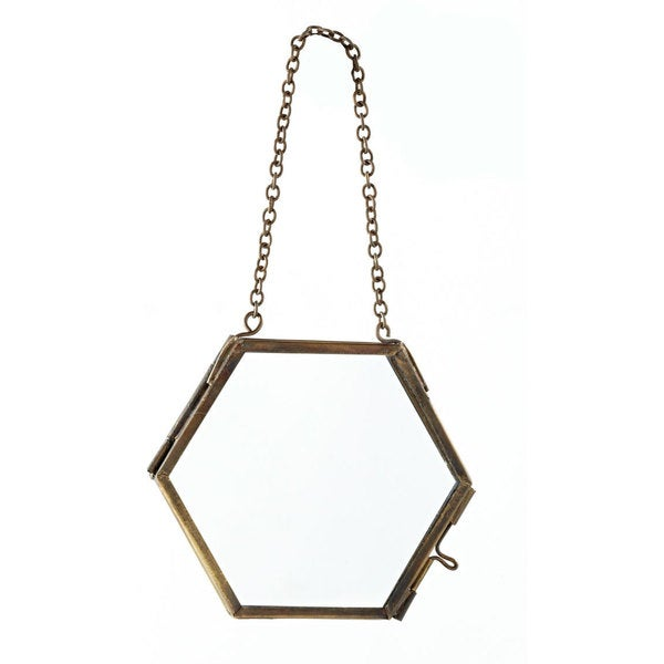 Hexagon Specimen Frame (Set of 4)
