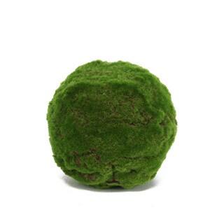 Decorative Moss Orb (Set of 4)