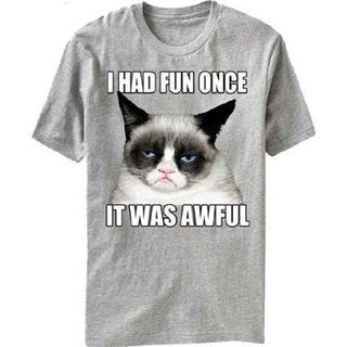 Men's Official Grumpy Cat I Had Fun Once It Was Awful T-shirt