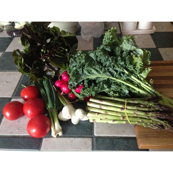 Weekly Subscription: Pheasant Hill Farm Small Produce Bundle (Local Delivery)