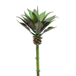 10.5-inch Yucca Plant (Pack of 6)