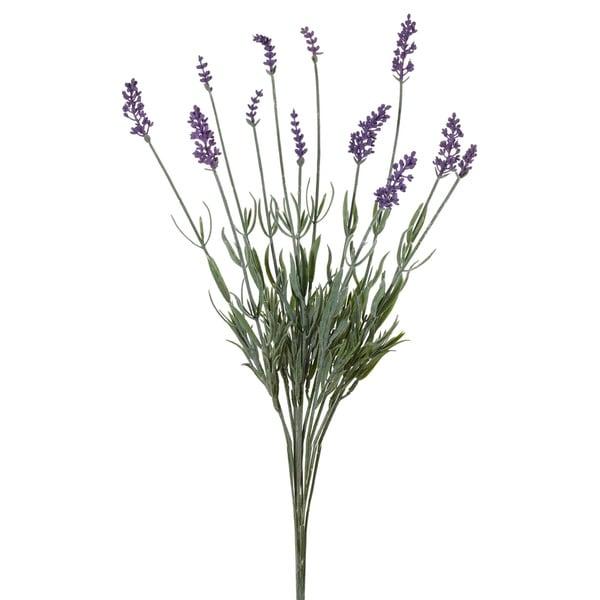 20-inch Lavender Bush, Pack of 6