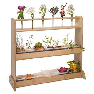 Whitney Brothers Nature Shelf