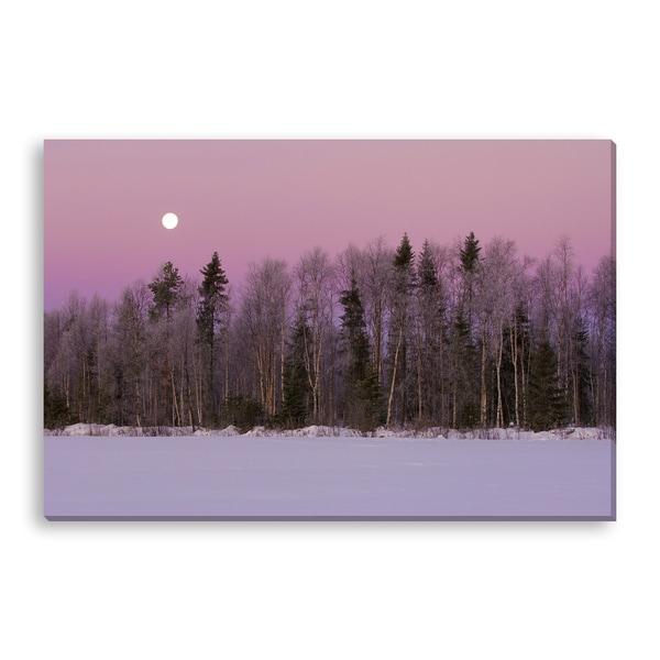 Zlikovec's 'Winter Sky' Gallery Wrapped Canvas