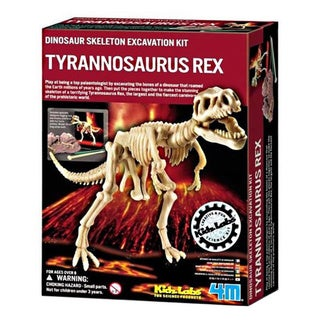 Toysmith Dig A Dino T-Rex Excavation Kit