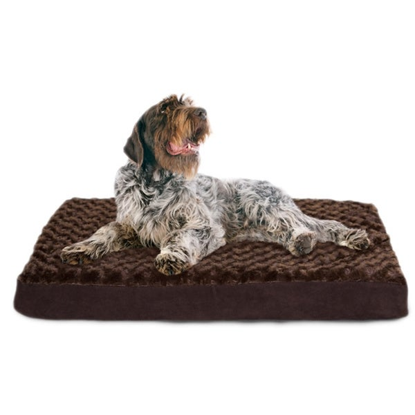 Memory Foam Bed For Senior Dogs