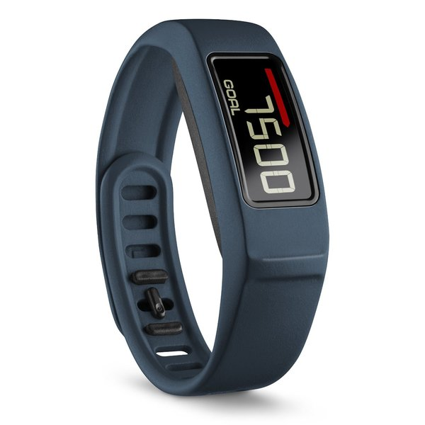 Vivofit 2 Activity Tracker with Move Bar and Alerts (Navy)