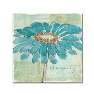 Chris Paschke 'Spa Daisies I' Canvas Art