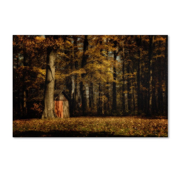 Lois Bryan 'The Clearing' Canvas Art