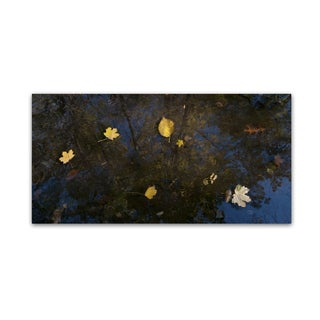 Kurt Shaffer 'Autumn Leaves Floating By' Canvas Art