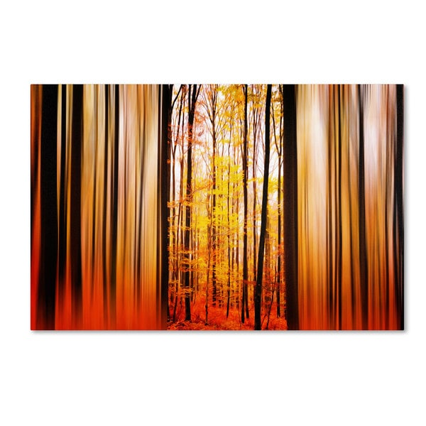 Philippe Sainte-Laudy 'Excited Oxygen' Canvas Art