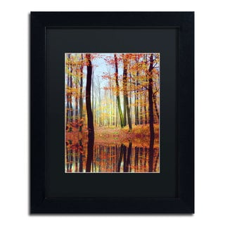 Philippe Sainte-Laudy 'Fall Mirror' Framed Matted Art