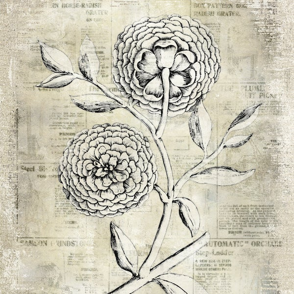 Antiqued Bloom II Printed on Canvas with Foil
