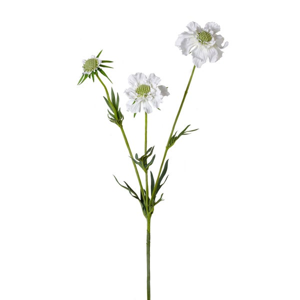28.5-inch Scabiosa Spray (Pack of 6)