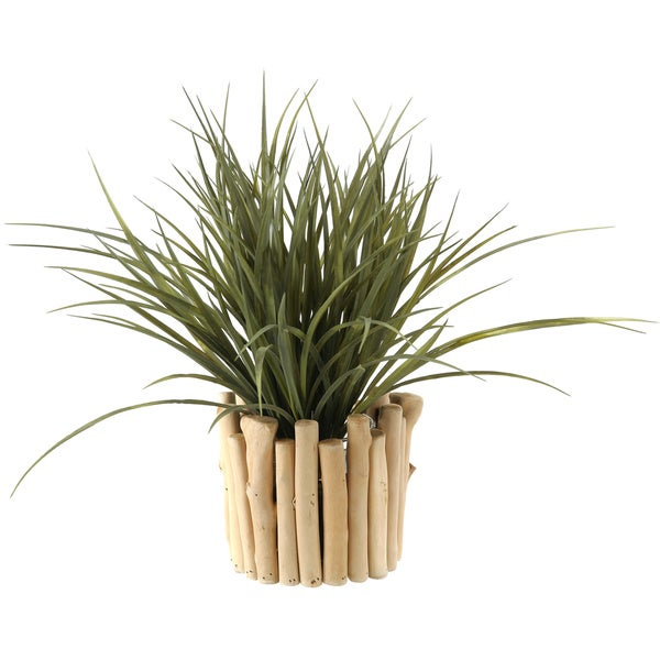 Green Wild Grass in Wood and Glass Planter