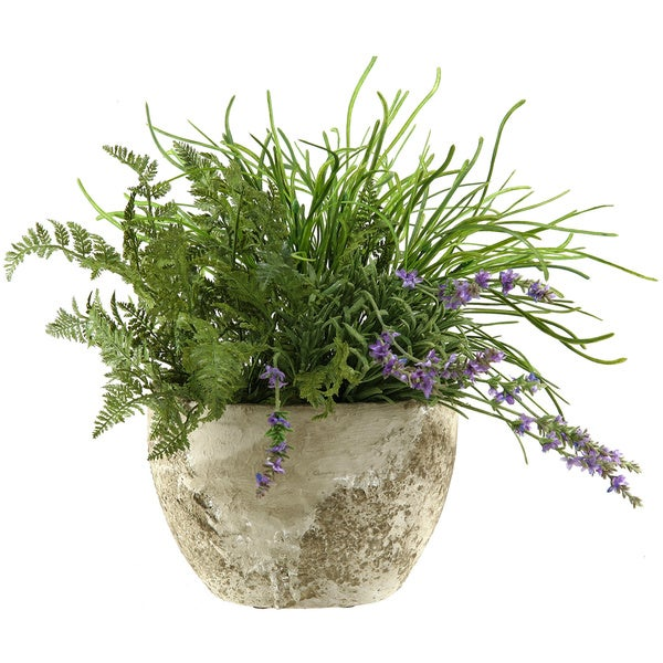 Pearl Grass and Forest Fern in Oval Cement Planter