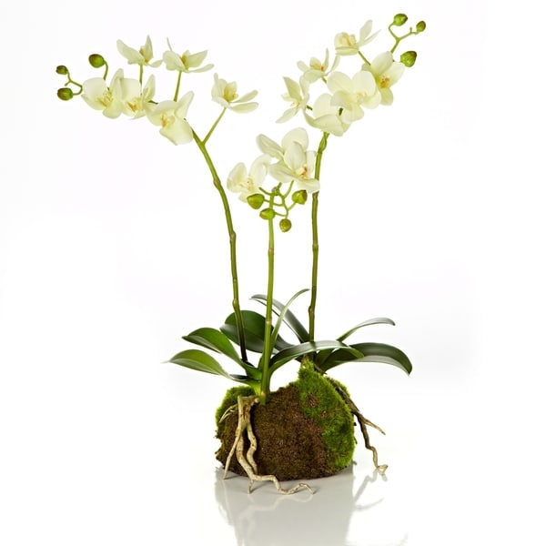 17-inch Orchid Garden Drop In (Packed 1 Each)