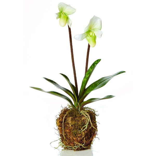 """18"""" LADY SLIPPER ORCHID DROP IN, (Pack of 4)"""