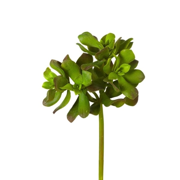 9-inch Ruffle Jade Stem (Pack of 6)