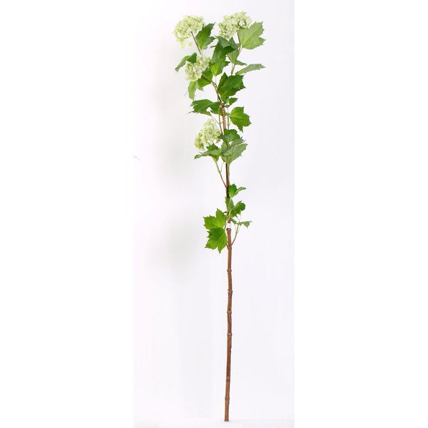 40-inch Viburnumn Branch (Pack of 6)