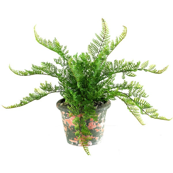 D&W Silks Lace Fern in Antiqued Terra Cotta Planter