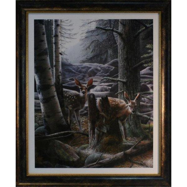 Kevin Daniel 'White Tail Fawn' Framed Print