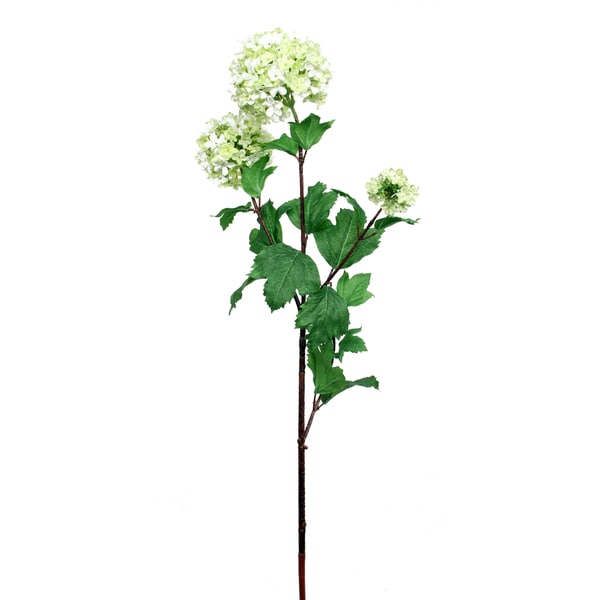 24-inch Viburnum Stem (Pack of 12)