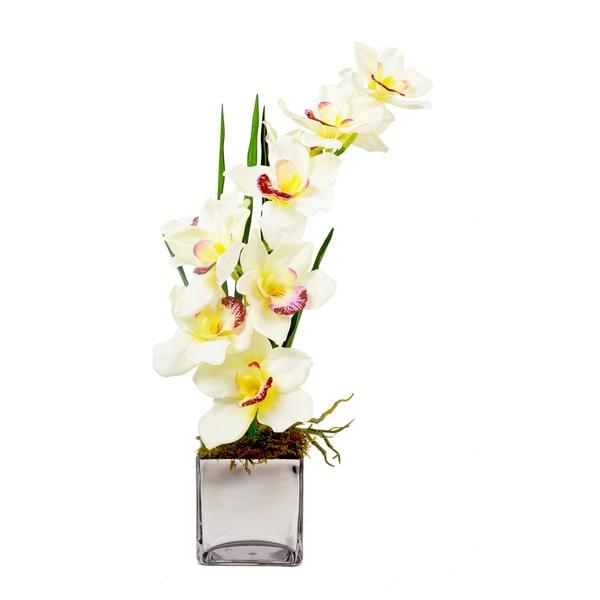 White Cymbidium Orchid in Mirrored Glass Cube