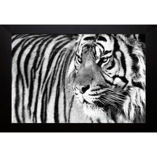 Xavier Ortega 'Tiger Eyes' Framed Artwork