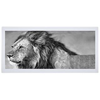 Xavier Ortega 'Lion eyes' Framed Artwork