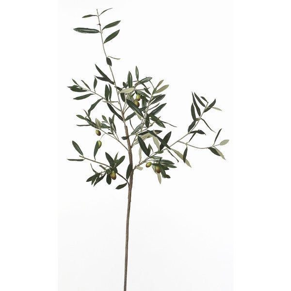 40-inch Olive Branch (Pack of 6)