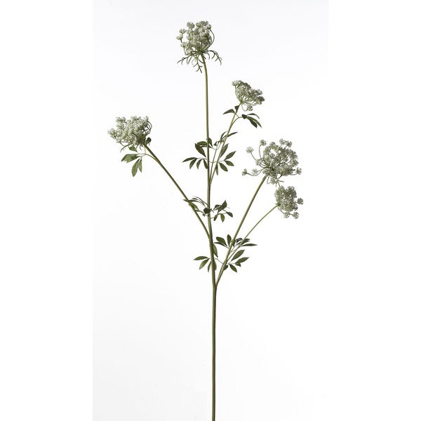 43-inch Queen Anne's Lace Stem X5 (Pack of 12)