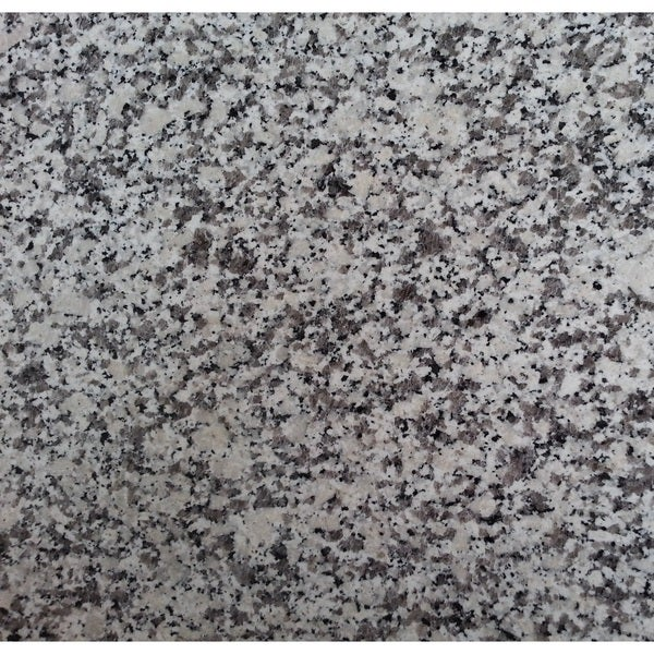 Granite 12-inch Black & White(Dalmatian) Natural Floor and Bathroom Tile (Pack of 100)