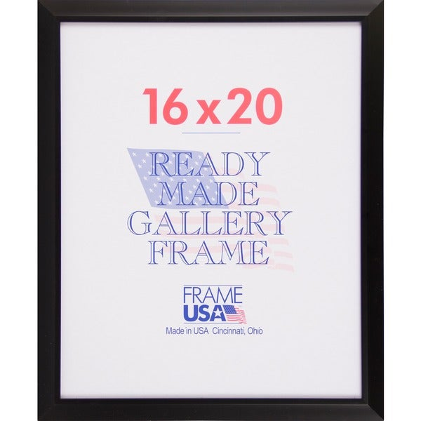 "Budget Saver Picture Frame (16"" x 20"")"
