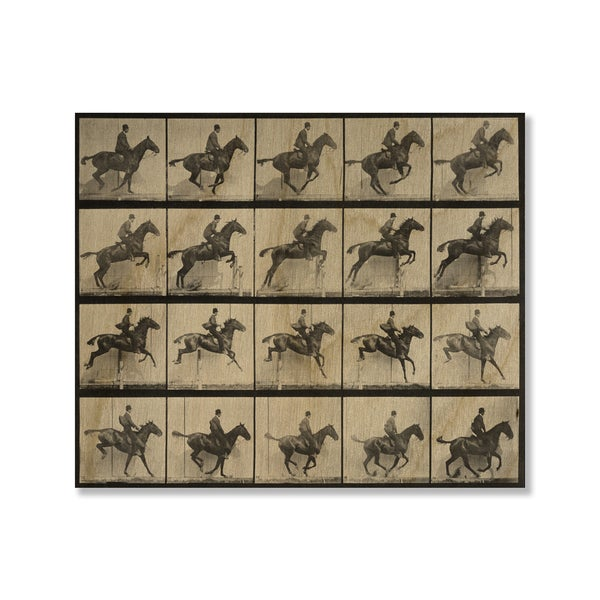 Eadweard Muybridge's 'Man and Horse Jumping a Fence' Print on Wood