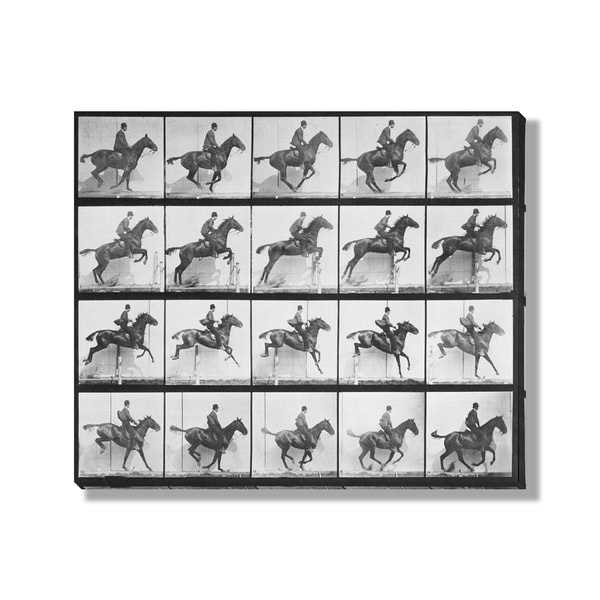 Eadweard Muybridge's 'Man and Horse Jumping a Fence' Gallery Wrapped Canvas