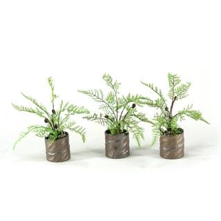 Lace Fern/ Lichen Spray Ceramic Planter (Set of 3)