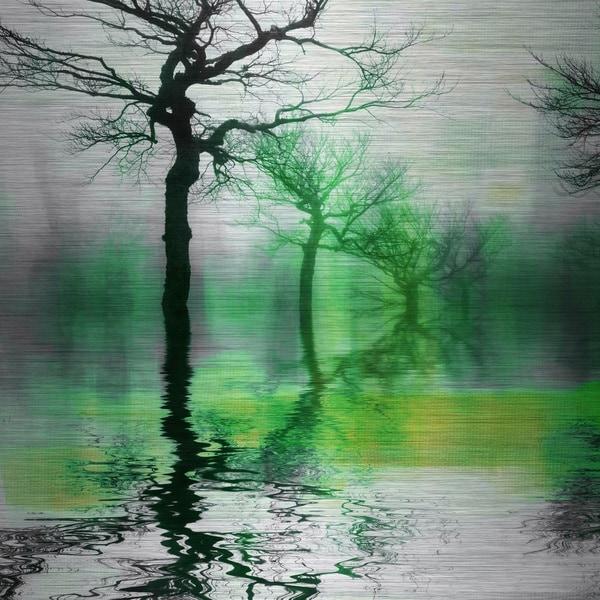 Parvez Taj 'Misty Green Lake' Aluminum Print Art