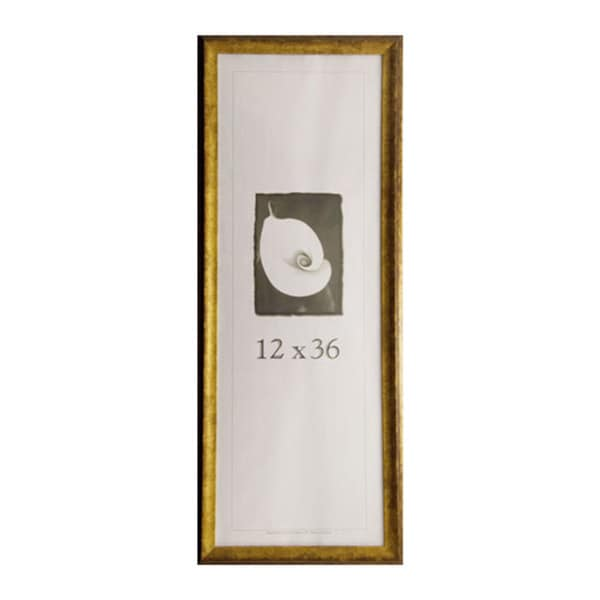 Verona Narrow 12-inch x 36-inch Picture Frame - 17108297 - Overstock ...