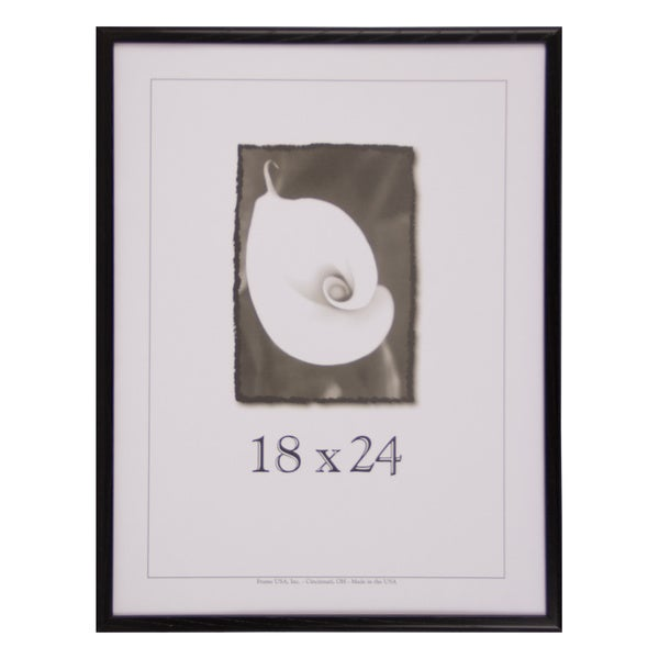 Economy 18 Inch X 24 Inch Picture Frame 17108306