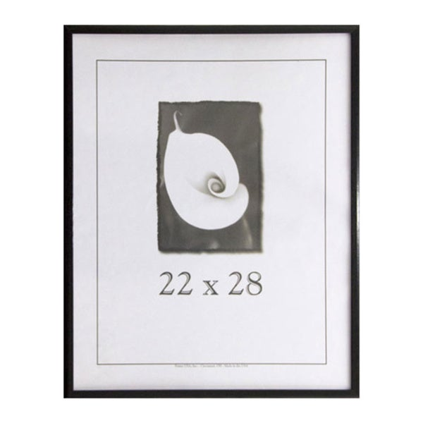 Economy 22-inch x 28-inch Picture Frame