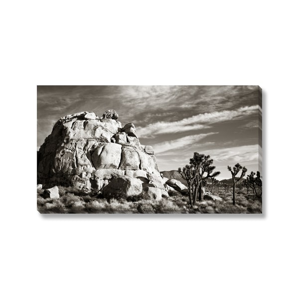 Nstanev 'Joshua Tree National Park' Gallery Wrapped Canvas
