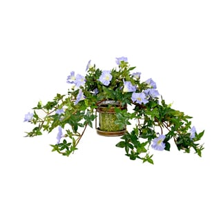 Lavender Morning Glory in Iron/ Glass Container with Green Peas