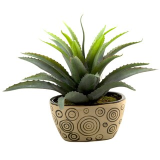 D&W Silks Star Succulent in Planter
