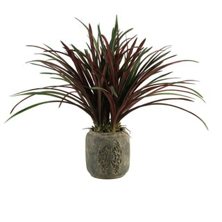 D&W Silks Burgundy / Green Areca Grass in Stone Planter