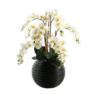 D&W Silks Cream Natural Touch Phael Orchids in Contemporary Black Resin Ball Planter