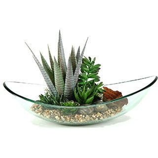D&W Silks Mixed Aloe and Succulents in Glass Bowl