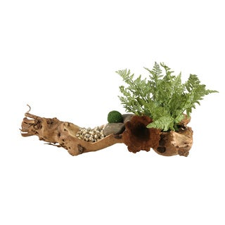 D&W Silks Small Forest Fern and Moss Stones in Wooden Log