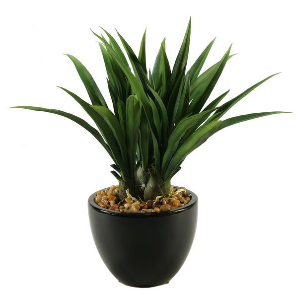 D&W Silks Green Lily Grass in Ceramic Bowl