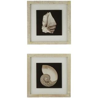 Cream Shells Framed Giclee Print Wall Art (Set of 2)